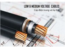 Bảng giá dây cáp điện 3 pha